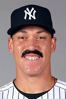 Baseball Mustache - Aaron Judge